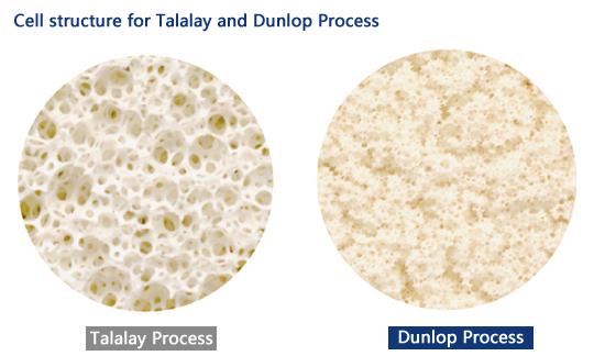 dunlop vs talalay process